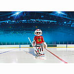 5074 - NHL Blackhawks Goalie