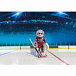 5078 - NHL Canadiens Goalie