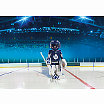 5083 - NHL Maple Leafs Goalie