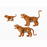6645 - Tiger Family